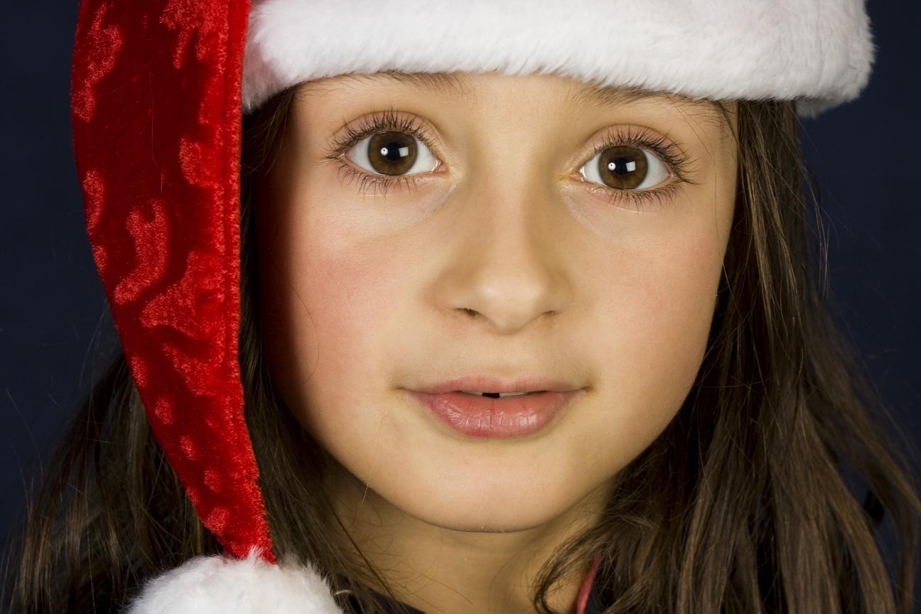Portrait pour Noël, Salon Arts et Artisanat MJC P.J.