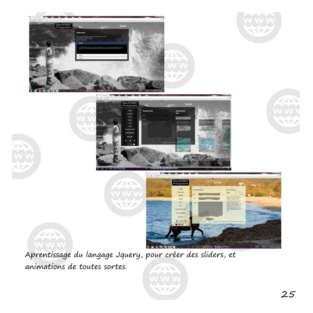 infographie-web